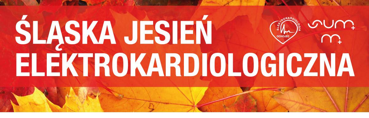 Śląska Jesień Elektrokardiologiczna